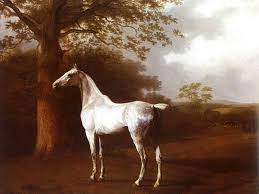 white horse painting horse oil painting white horse in pasture by agasse jacques