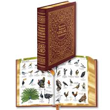 merriam webster s visual dictionary easton press merriam webster s visual dictionary