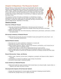 Muscle Location And Function Chart Chapter 6 Objectives The Muscular System
