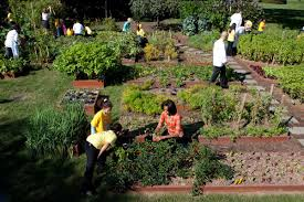 Kitchen Gardens Parkway Partners A April 2nd Saturday Kitchen Gardens