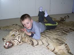 the tiger and my son at the time he just turned five great way to judge the very small size of the tiger