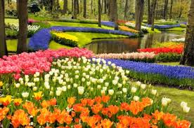 Chic Garden And Flowers Flower Garden Pictures Pictures Of Beautiful Flower  Gardens