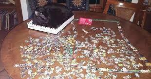 cat puzzle rug