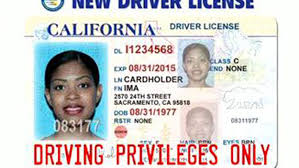 110k Undocumented Driver's Cbs California Licenses Los Issues – Immigrants Angeles To