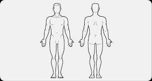 Body Chart Body Chart Bronchiectasis