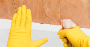 how to remove mold and mildew from