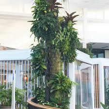 informal green wall indoors. Column Vertical Gardens By Fytogreen, Pole Planters, Curved Gardens, Cylinders, Green Informal Wall Indoors N