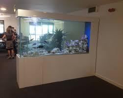 office aquarium. office aquarium s