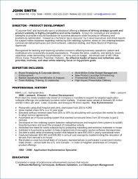 Executive Resume Format Resume Layout Com