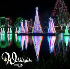Akron Ohio Zoo Lights The Best Christmas Light Displays In The State Of Ohio For 2017