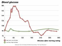 Blood Sugar Levels On Low Carb High Fat Edify