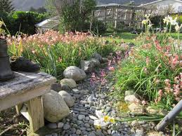 Small Picture Co Creative Garden Design and Landscape Inanga Rose Energy Healer