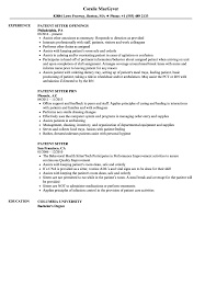 Patient Sitter Resume A Good Resume Example