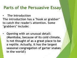 how to writing english essay < de olho no cariri narrative essay research proposal statement professional writing services in narrative essay