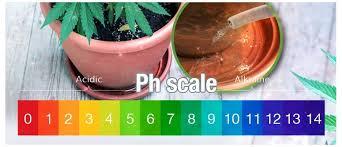 Cannabis Ph Chart The Best Ph Value For Cannabis Plants Cannaconnection Com