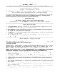 Chief Financial Officer Free Resume Samples Blue Sky Resumes