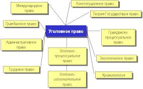 Конспект лекции Уголовное право понятие предмет и система  Конспект лекции Уголовное право понятие предмет и система ru