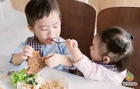 Lượng thịt ăn dặm phù hợp nhất cho bé từng độ tuổi-Viện Dinh dưỡng VHN Bio