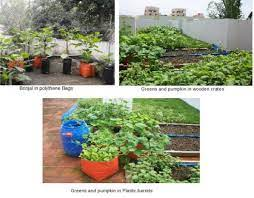 horticulture landscaping types of