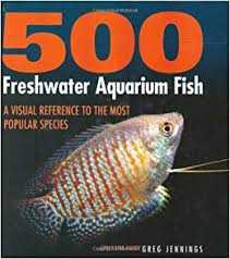 500 Freshwater Aquarium Fish A Visual Reference To The Most