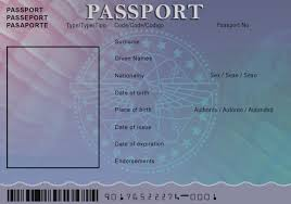 Free Passport Template For Kids Awesome Blank Passport Template For Kids 100 Templates Free Word PDF 38