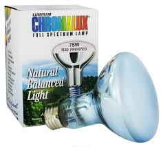 Chromalux Light Bulbs Chromalux Light Bulb Frosted Flood Full Spectrum 75w Amazon