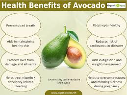 the health benefits of avocado include proper digestion weight gain skin care psoriasis