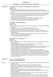 Information Technology Resume Sample VP Information Technology Resume Samples Velvet Jobs 19