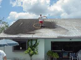 Image result for cost of roof cleaning