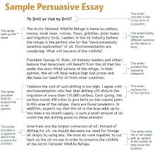 6th grade essay topics argumentative essay examples 6th grade theailene co in