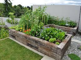raised vegetable garden design minimalist
