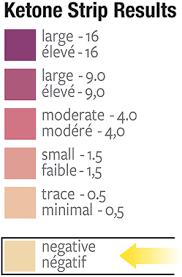 Ketone Strips Color Chart Prairie Naturals Sport Keto Strips 100 Strips