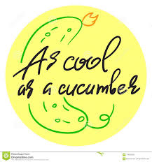 As Cool As A Cucumber Stock Vector Illustration Of Quotes 118325293