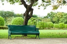 Výsledek obrázku pro park s lavičkou