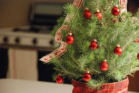 Small Picture Christmas Decorating Ideas 3 Ways to Decorate Mini Trees