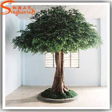 large outdoor artificial ficus trees made of fiberglass pictures photos