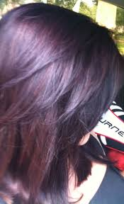 Brown Hair With Plum Highlights So