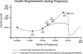 Pregnancy With Diabetes Your Guide To Each Trimester