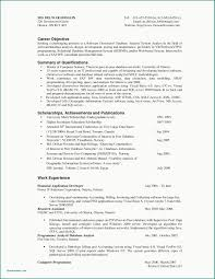 Profile In A Resume Examples Elegant Stock Objective For Software