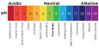 What Is Ph Ph Chart Ph Of Water Know Your Water Alabama