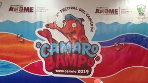 """Resultado de imagen para Festival del Camarón 2019 """"Camarobampo"""""""