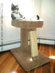 cool cat tree furniture. Cat Cool Tree Furniture