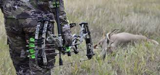 Compound Bow Safety And Warnings Hoyt Archery