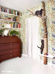 view this image cat lovers 27 diy