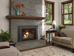 pellet stove insert gas fireplace