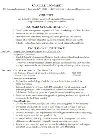 Summary Resume Template Example Of Resume Summary The Best Summary Of  Qualifications Printable