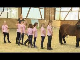 смотрите сегодня Pferdeliebe Von Anfang An Team Pony Concept