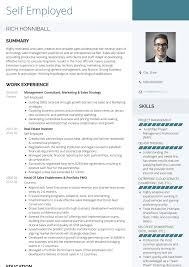 Take a look at our cv examples in professional templates. Self Employed Resume Samples And Templates Visualcv