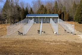 diy outdoor dog kennel flooring heated dog house plans beautiful 76 best dog kennel designs images
