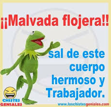 Pin by Raul Connor on HUMOR | Funny phrases, Funny spanish jokes ...